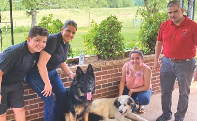 Shown, from left, is Alejandro Jose Romo; Leticia Romo; the family's 1-year-old German Shepherd, Jack; 5-month-old Grand Pyrenees, Pirata; Stephany Romo; and Alejandro Romo at their house in Mt. Airy, where Jack got loose and was taken to Orlando, Florida, then West Virginia.